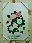 日日草シェイプアート.JPG