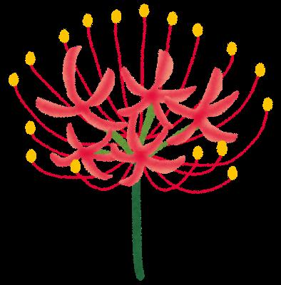 flower_higanbana.png